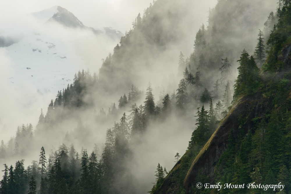 Alaska Mist