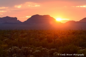 Arizona Sunset Sonoran Desert