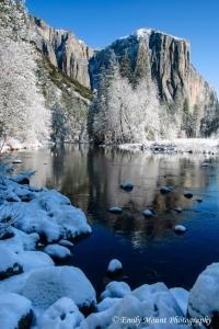 Yosemite View Snow