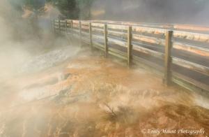 Yellowstone Bridge